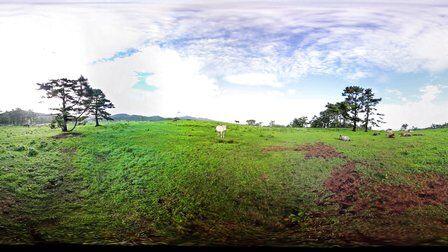 VR全景视频:济州岛风光4K画质
