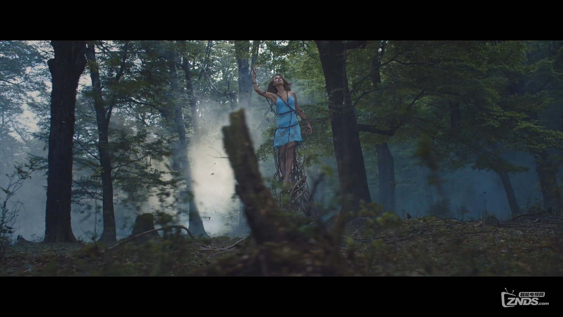 Taylor Swift - Out of the Woods.ts_20160103_194423.625.jpg